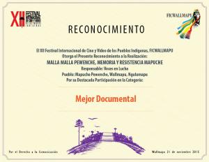RECONOCIMIENTO-9--MALLA-MALLA-PEWENCHE